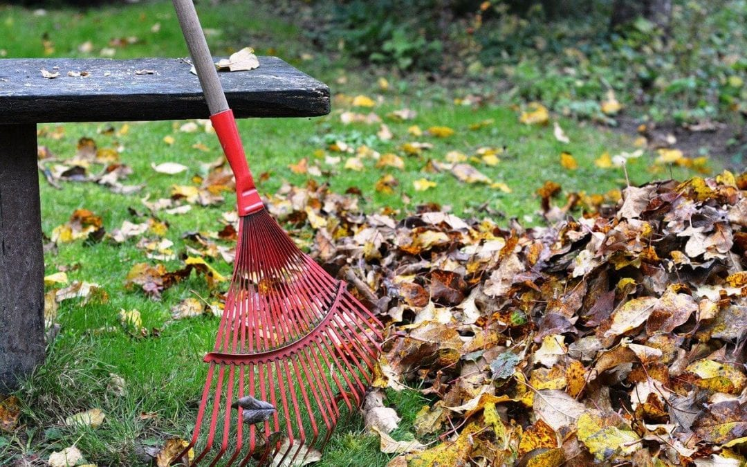 fall home maintenance includes raking leaves